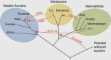 Image result for Native (aboriginal) Australian DNA reveals ancient inter-breeding
