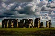 Image result for A 7,000 year-old York dog is forcing experts to rethink on Stonehenge