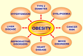 Image result for Being overweight, not just obese, carries a lot of serious health risks